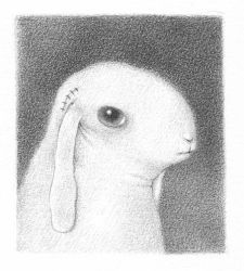 bunny four by reneefrench