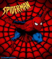 Spider-Man - The Amazing Wall Crawler by ShadowNinjaMaster