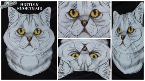 3D - Portraits: British Shorthair by SaQe