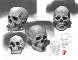 Sketchbook - Skulls by Changinghand