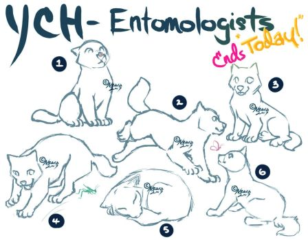 YCH- Entomologists :ENDS TODAY!!! by Neara-works