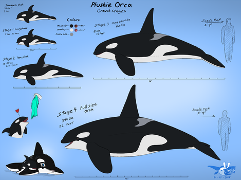 Plushie Orca's Growth Stages by Sabre471