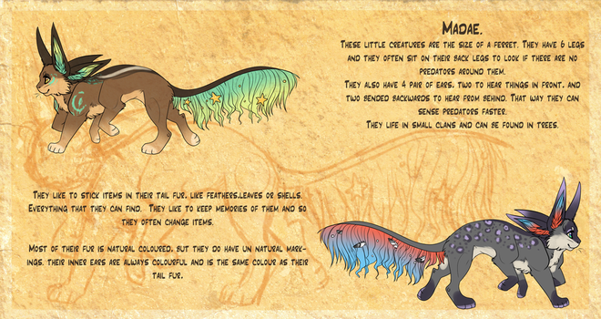 Madae - semi-open species- by Maonii