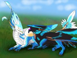 Contest: Avian - Sisters by FeatheredDragon