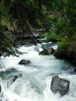 Rogue River Stock 3 by Carol-Moore