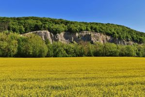 yellow rock by Dieffi