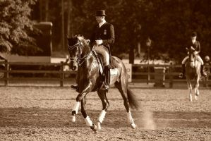 Dressage -I'm a athlete by AndersStangl