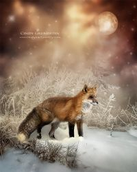 FrenchFox by CindysArt
