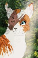 From this moment she will be known as Brightheart by Fernyfeline