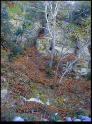 Colby Canyon by Fall-Leaves-Club