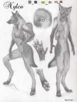Nylca Reference Sheet - Wolf Boy by Canine-Lupus
