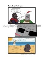 Solaire's favorite season by UsagiLovex
