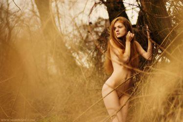 Web of lies by antoanette