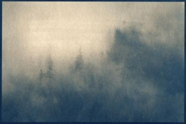 Breathing Earth - Cyanotype by StephanePellennec