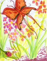 Butterfly Thank You Card by EmilyCammisa