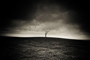 Reborn From Isolation by CainPascoe