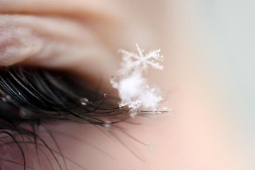 snow flake on eyelash by Barbara-B