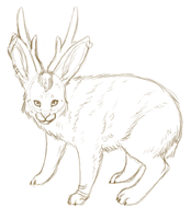 Sketch- Jackalope by pandapoots