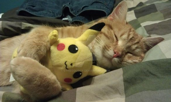 Fluffy Hugs for Pikachu by Gynecology