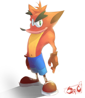 Crash Bandicoot Quickie by StriCNYN3