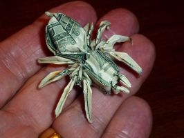 492 Money Spider by neubauten
