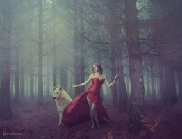 Into The Woods by barbranz