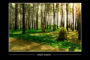 Stones by tomsumartin