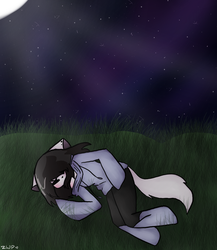 Nighttime Doze by ZombieWolfPlays