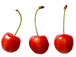 Cherries PNG by Bunny-with-Camera