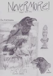 Nevermore! (The Raven) by XenoTeeth3