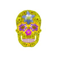 Flower Skull 3 by AgustinGoba