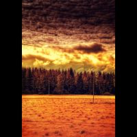 The amber season by wchild
