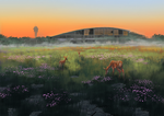 Old Airfield by kasettetape