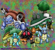 Turtle Pokemon