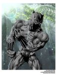 BLACK PANTHER final colors by drawhard