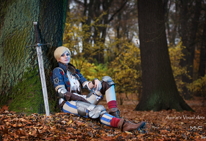 Ves - The Witcher by ayu-ai