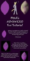Pitch's advanced fur tutorial by PitchblackDragon