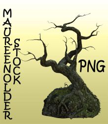 STOCK PNG treerock by MaureenOlder