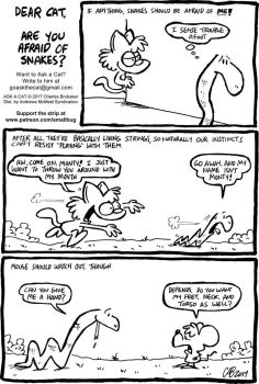 ASK A CAT: Snakes by bakertoons