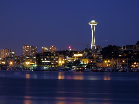 Space Needle, changed levels by Cobra740