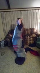 2.0 Abaddon Fursuit - Side by SafireCreations