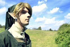 Link Cosplay #5 by Laovaan