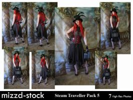 Steam Traveller Pack 5 by mizzd-stock