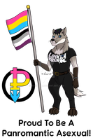 Proud To Be: Panromantic Asexual (Special Request) by horse14t