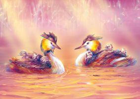 Crested Grebe Family by Fany001