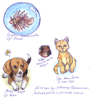 Pets of Star Trek by SilverXenomorph