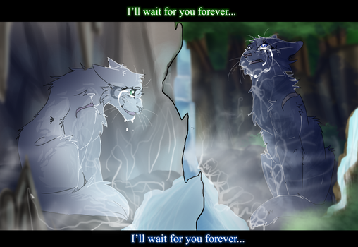 Jayfeather and Half Moon (Warrior Cats) by WarriorCat3042