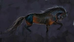 Speed painting friesian by Elsouille