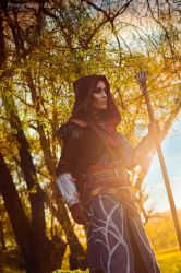 The Witcher 3 cosplay: Avallac'h by RenShuher