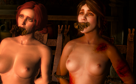 Witcher 3: Triss and Sweet Nettie bound and gagged by benja100